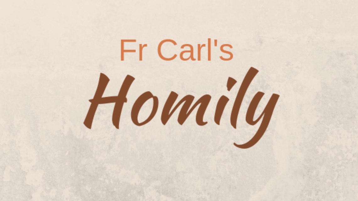 Fr Carl's Installation Mass Homily | St  Michael Catholic Church