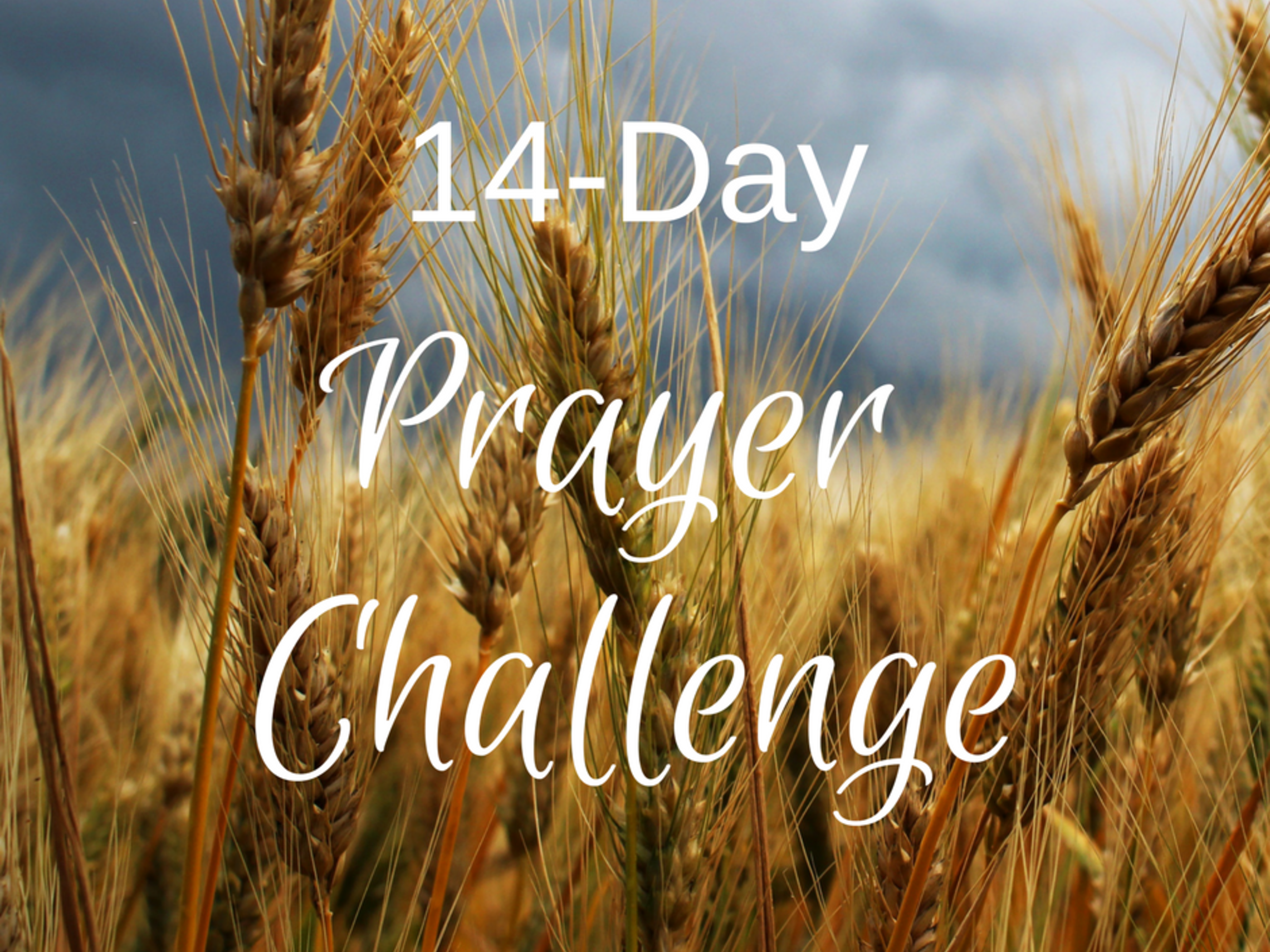 14 Day Prayer Challenge 1