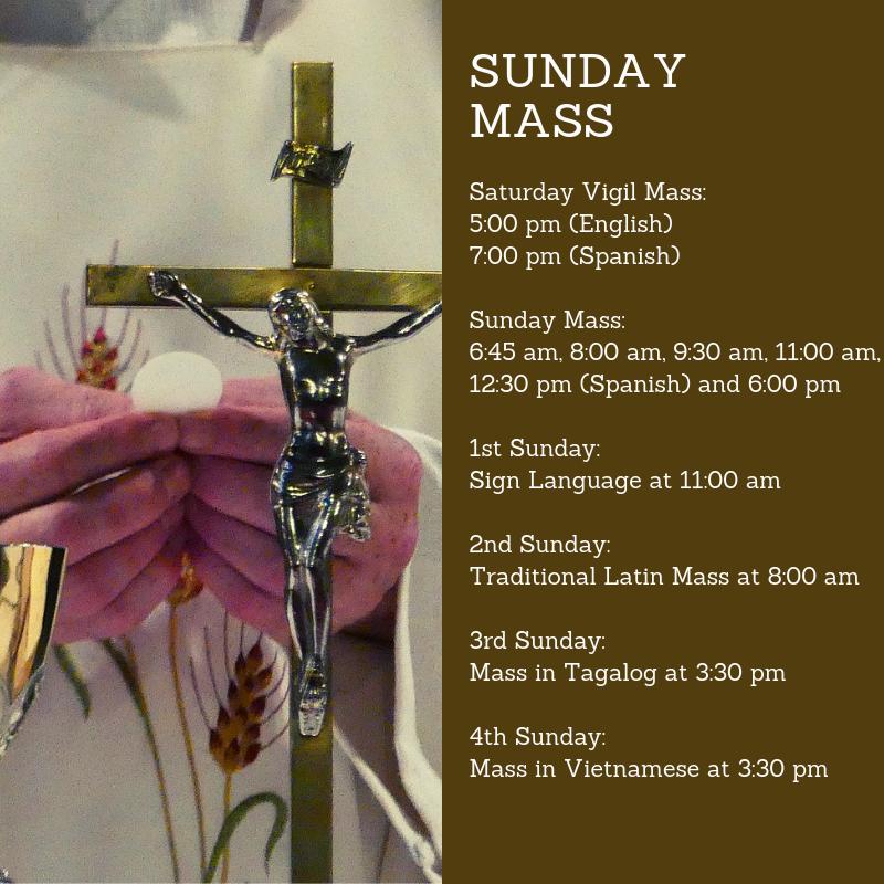 Mass Times   St  Michael Catholic Church